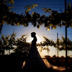 Best wedding photographers contest winner: Fall 2011