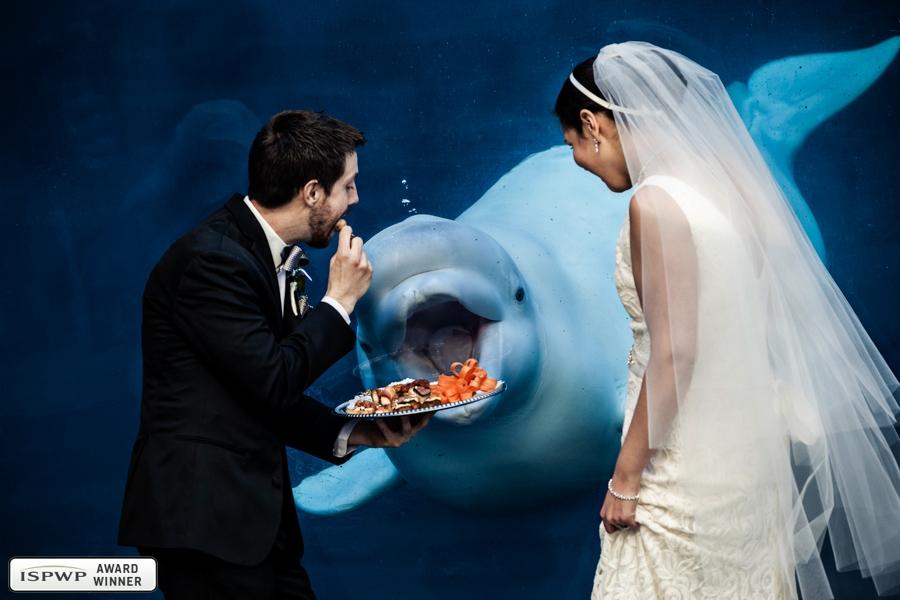 New York City, New York, United States Wedding Photographer - JAGstudios