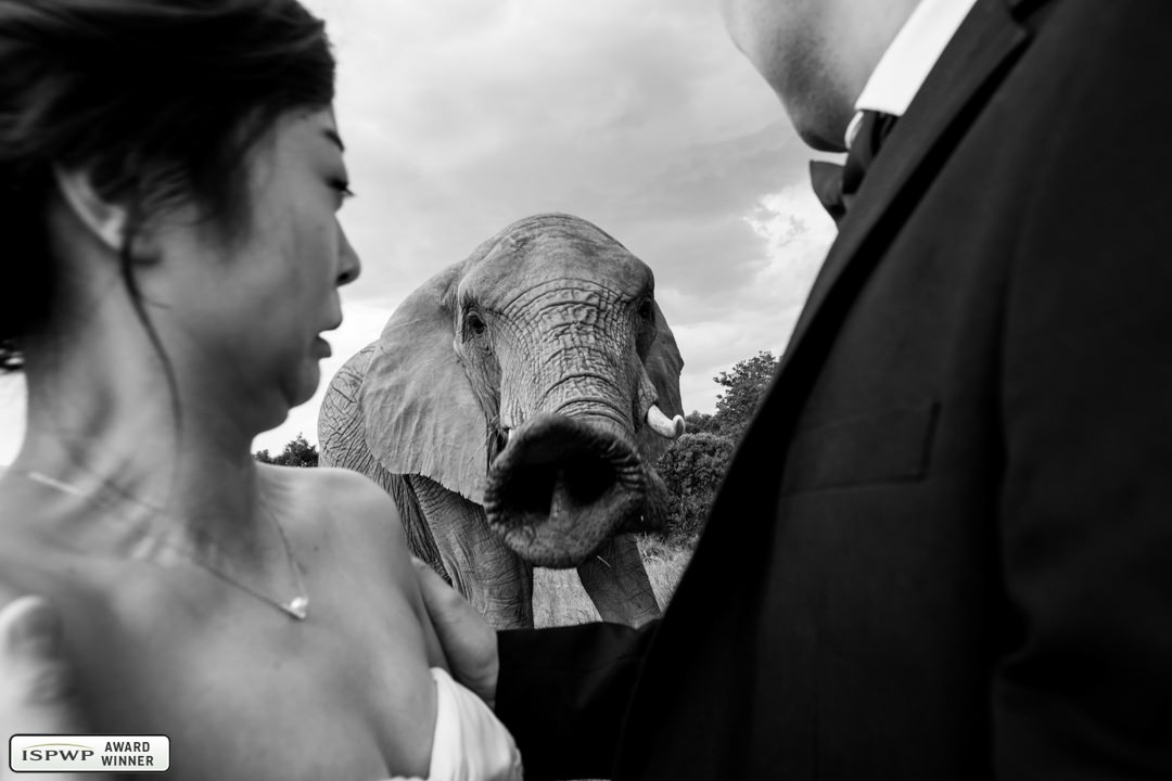 Daniel West | Daniel West | Johannesburg, South Africa wedding photographer