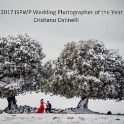 International Society of Wedding Photographers blog - ISPWP 2017 Wedding Photographer of the Year, and Top 100 Wedding Photographers in the World