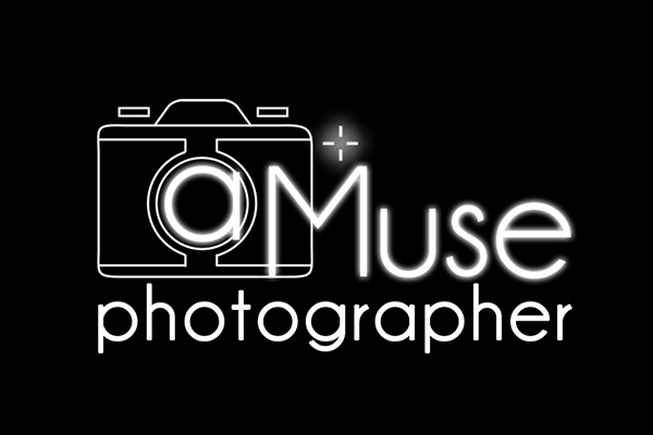 Best wedding photographers in : aMusephotographer