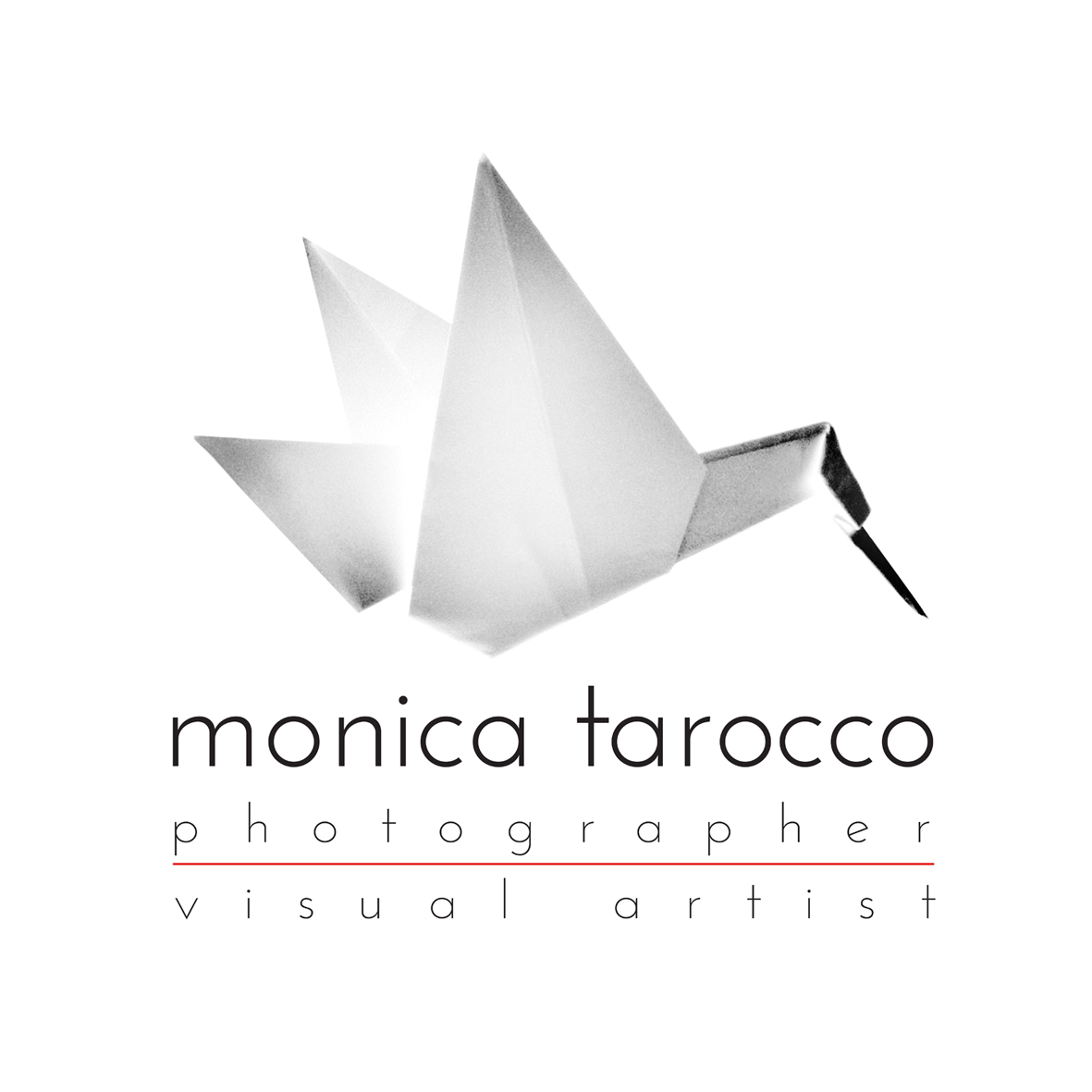 Best wedding photographers in : Monica Tarocco