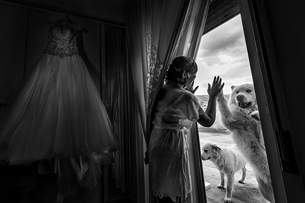 Wedding photography contests - Summer 2018 - 13th Place, Photo-4u