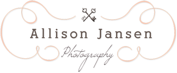 Huntsville , Al Wedding Photographer - Allison Jansen Photography