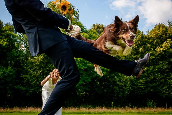 Top rated wedding photographers: Bardt