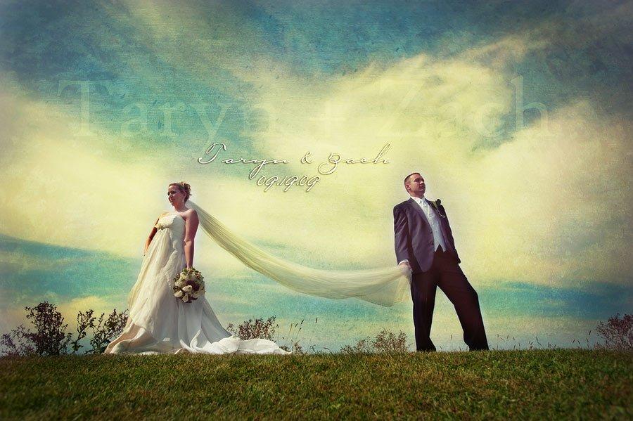 Real Weddings Bloomington Illinois Wedding Photographer Mark